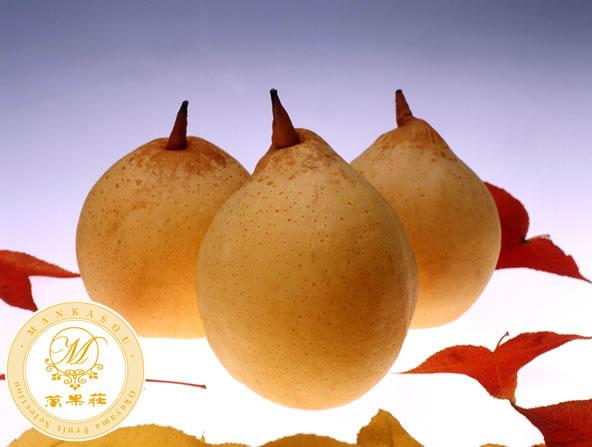 ヤーリー梨の詰合せ 贈答品にもピッタリな特選高級果物です。