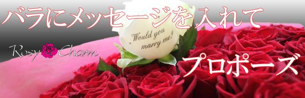 プロポーズに贈るバラの花束 バラにメッセージ入り